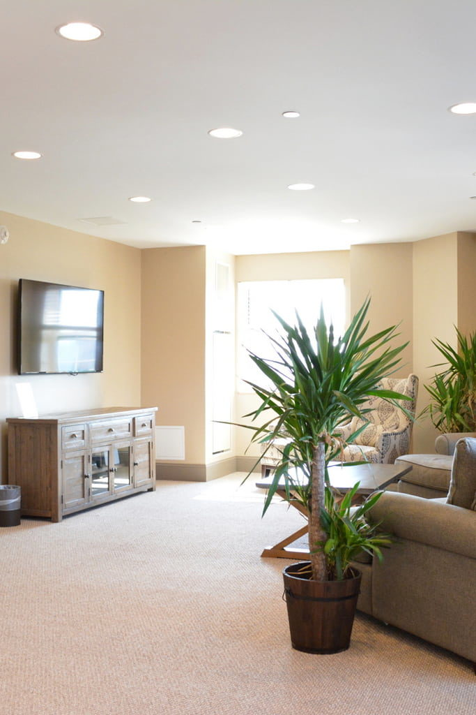 The Union Luxury Apartments In New Haven Ct Live Higher